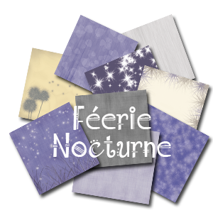 feerie-nocturne
